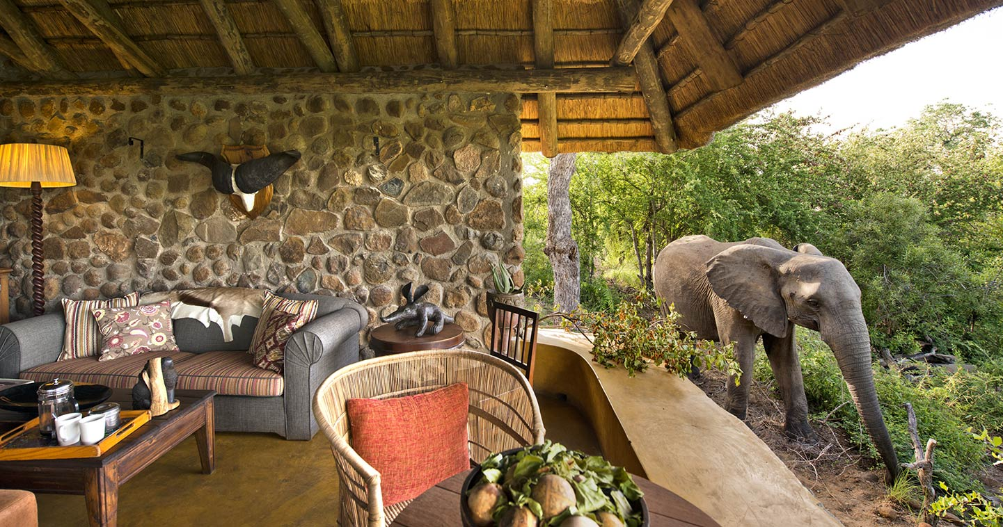 Geigers Camp in Timbavati Game Reserve