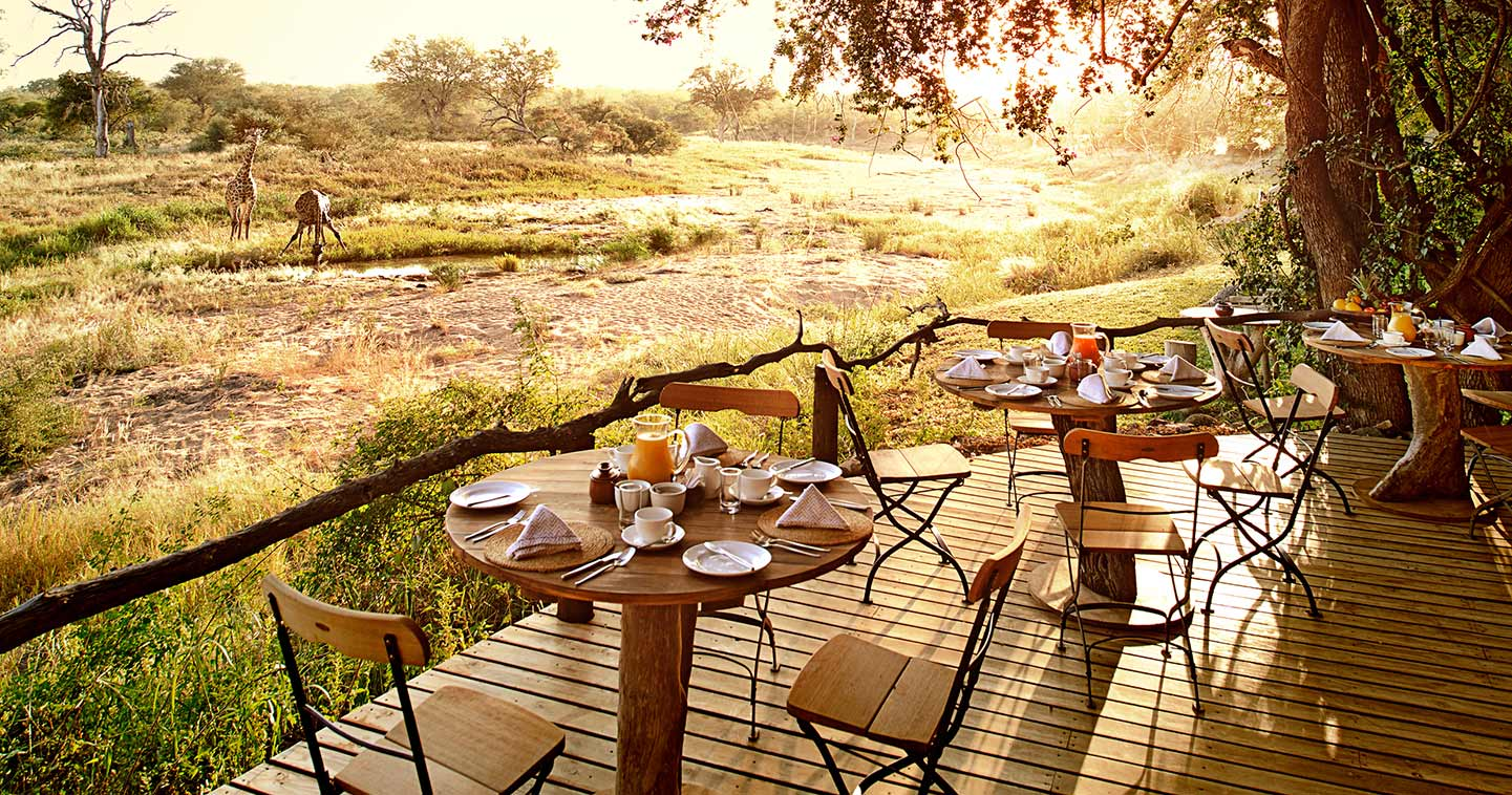 Motswari Game Lodge dining room in Timbavati Game Reserve