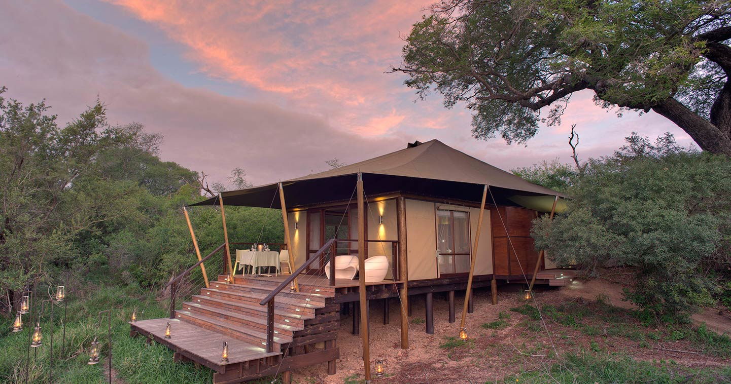 Ngala Tented Camp in Timbavati Game Reserve