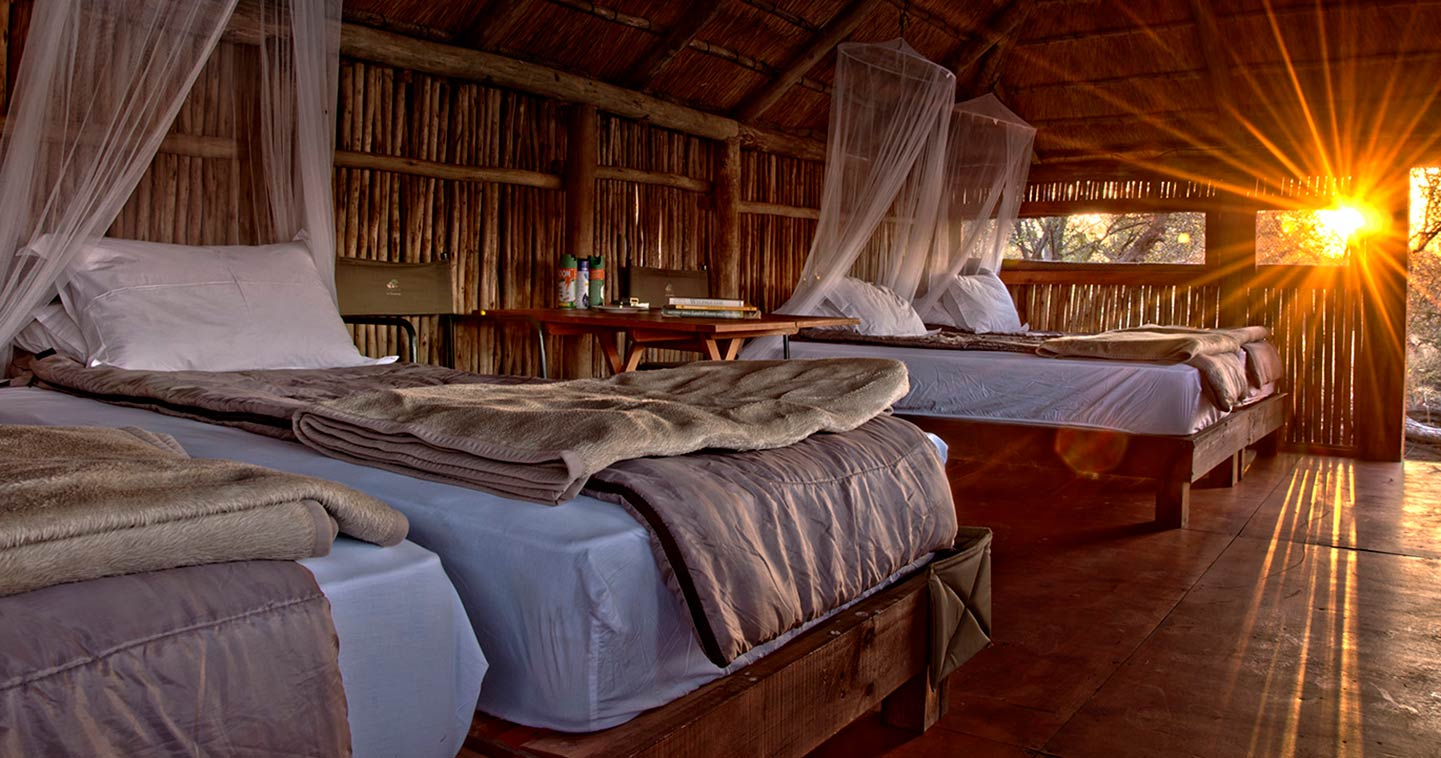 Shindzela Tented Safari Camp In Timbavati Game Reserve