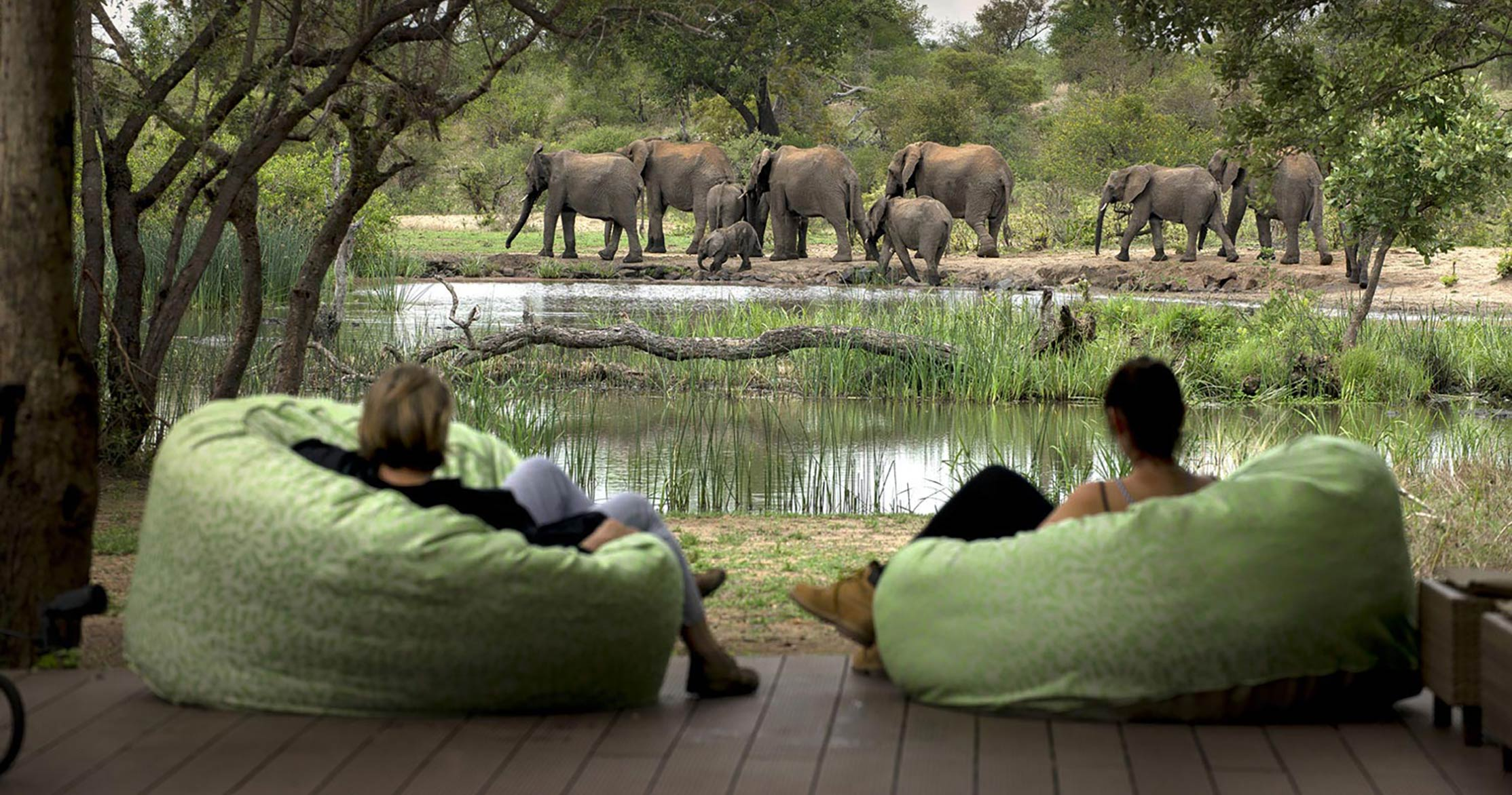 Timbavati Game Reserve - For an authentic luxury safari